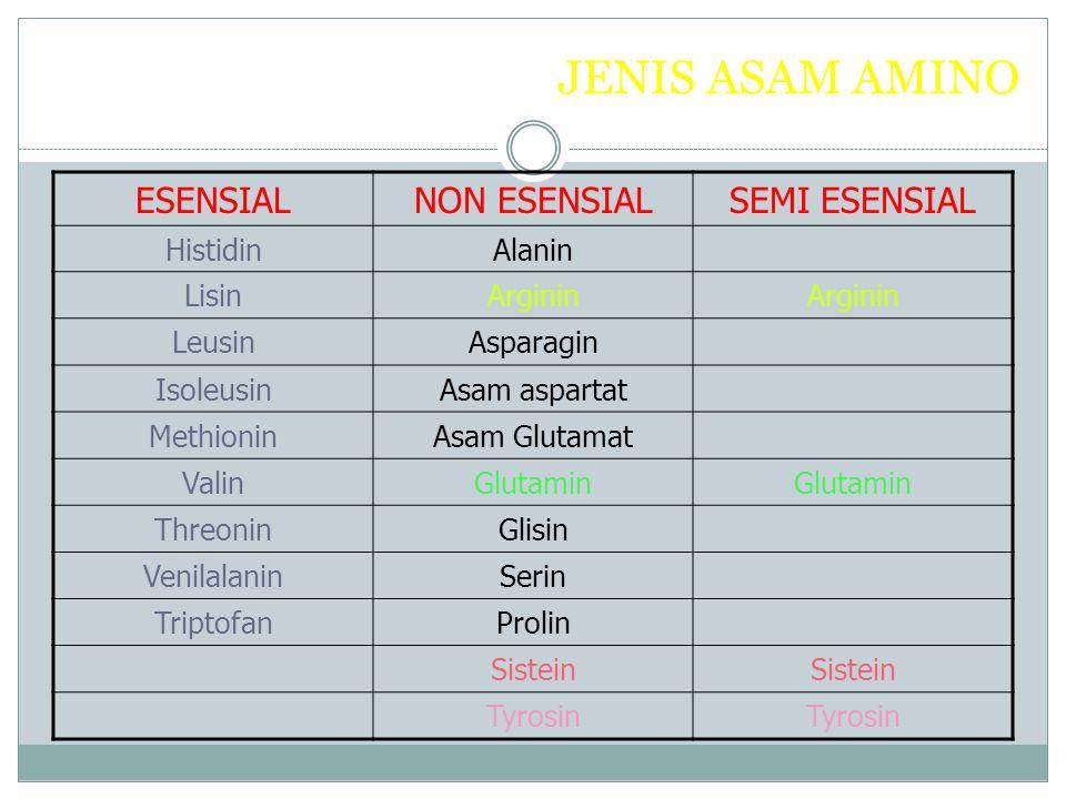 JENIS ASAM AMINO ESENSIAL NON ESENSIAL SEMI ESENSIAL Histidin Alanin