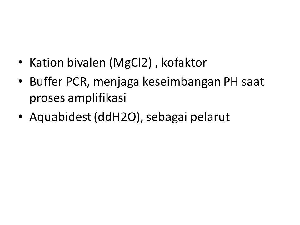 Kation bivalen (MgCl2) , kofaktor