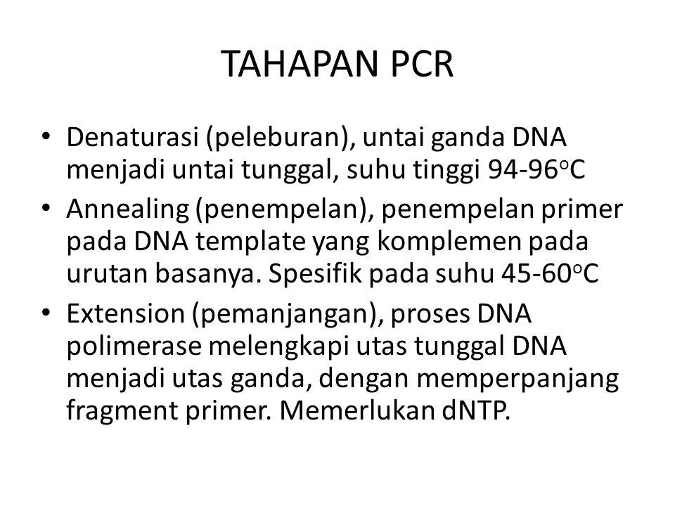 TAHAPAN PCR Denaturasi (peleburan), untai ganda DNA menjadi untai tunggal, suhu tinggi 94-96oC.