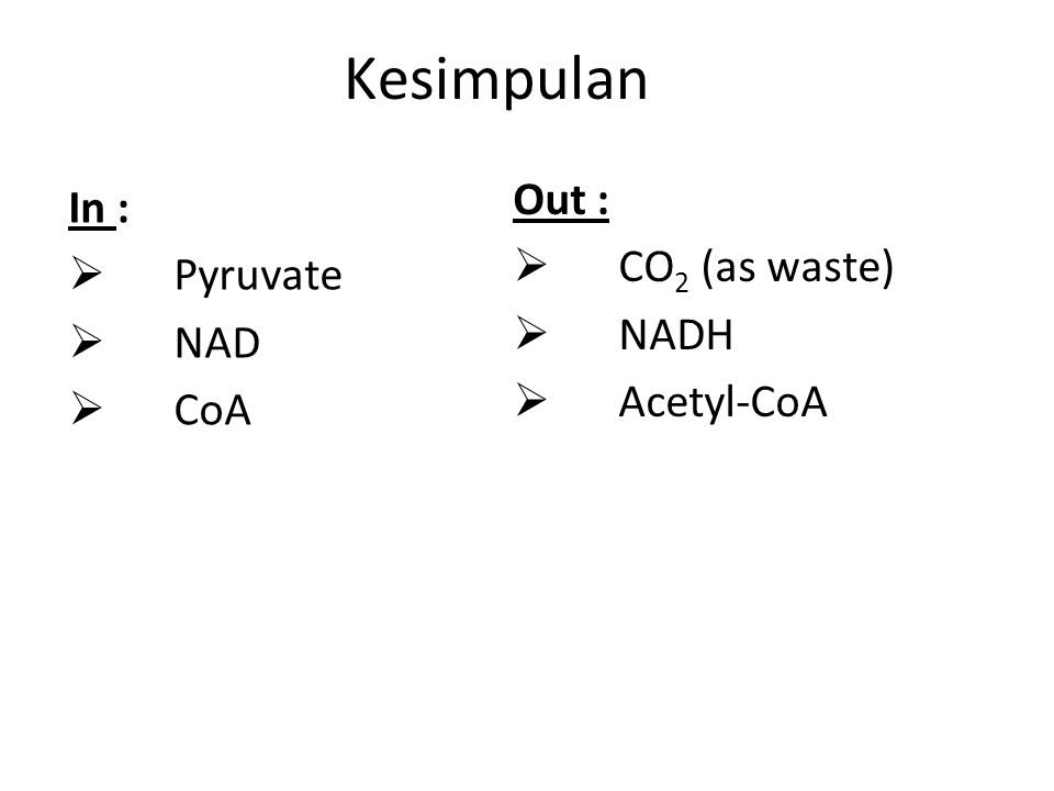 Kesimpulan Out : CO2 (as waste) NADH Acetyl-CoA In : Pyruvate NAD CoA