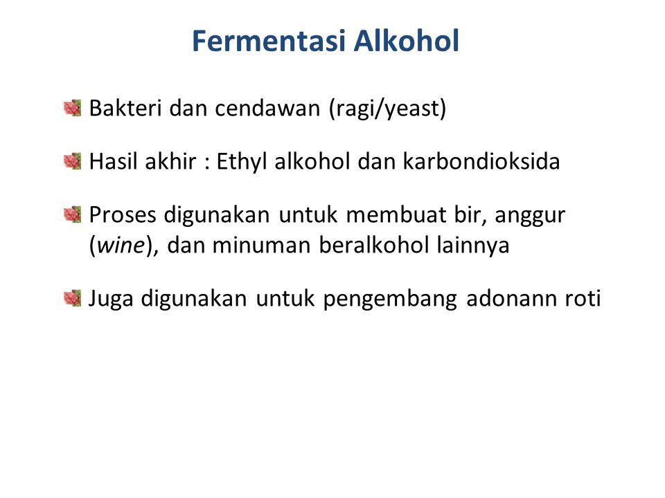 Fermentasi Alkohol Bakteri dan cendawan (ragi/yeast)
