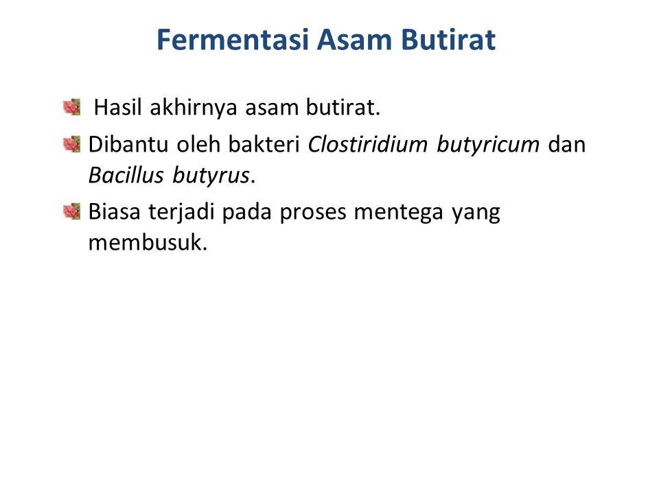 Fermentasi Asam Butirat