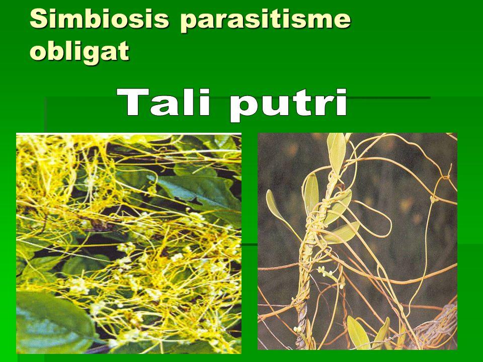 Simbiosis parasitisme obligat