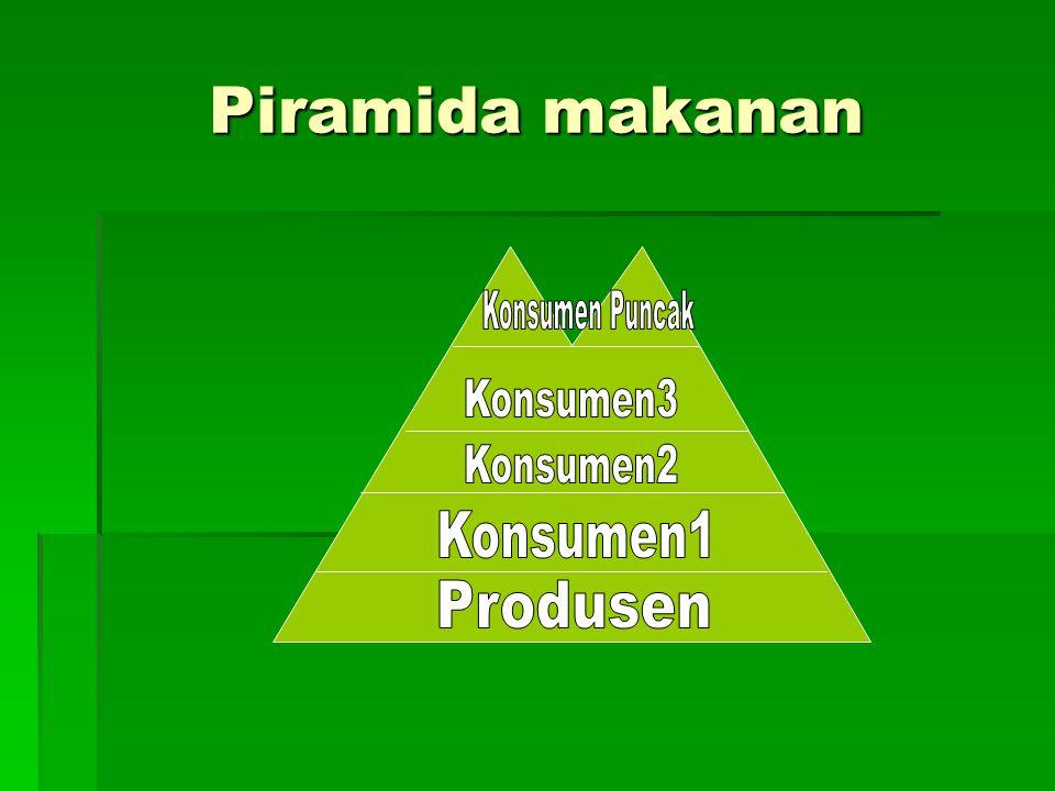 Piramida makanan Konsumen Puncak Konsumen3 Konsumen2 Konsumen1
