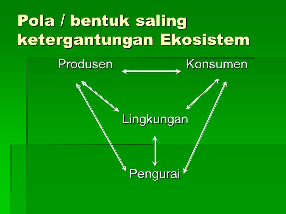 Pola / bentuk saling ketergantungan Ekosistem