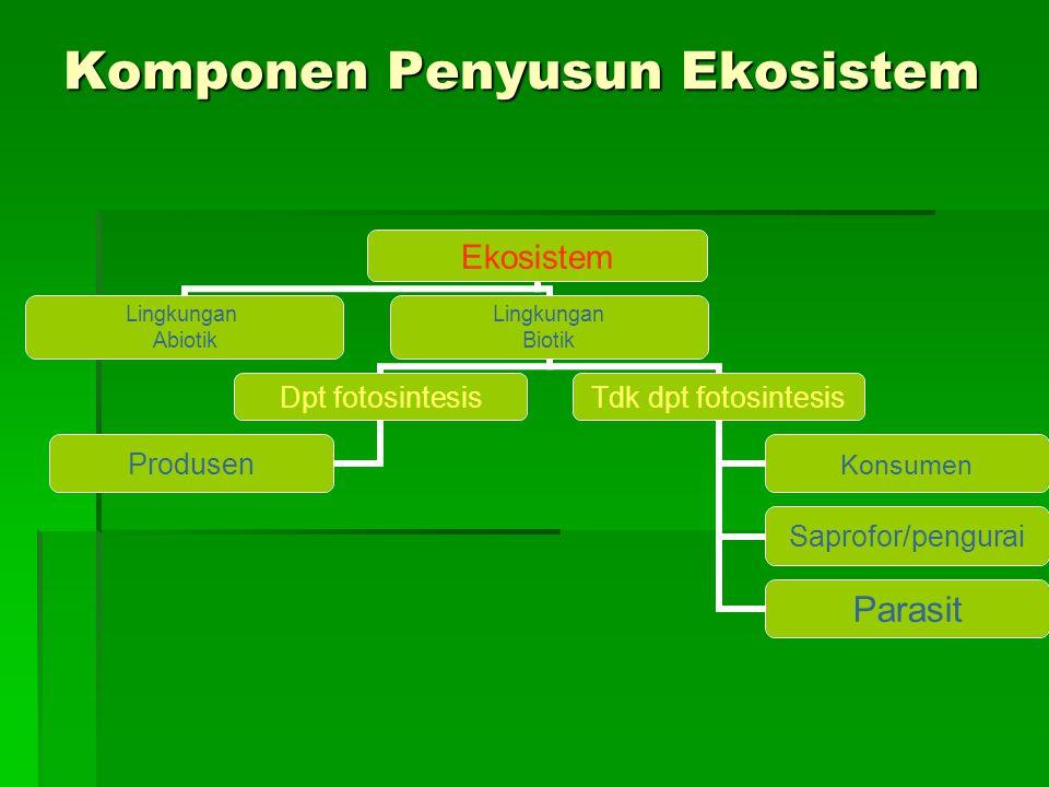 Komponen Penyusun Ekosistem