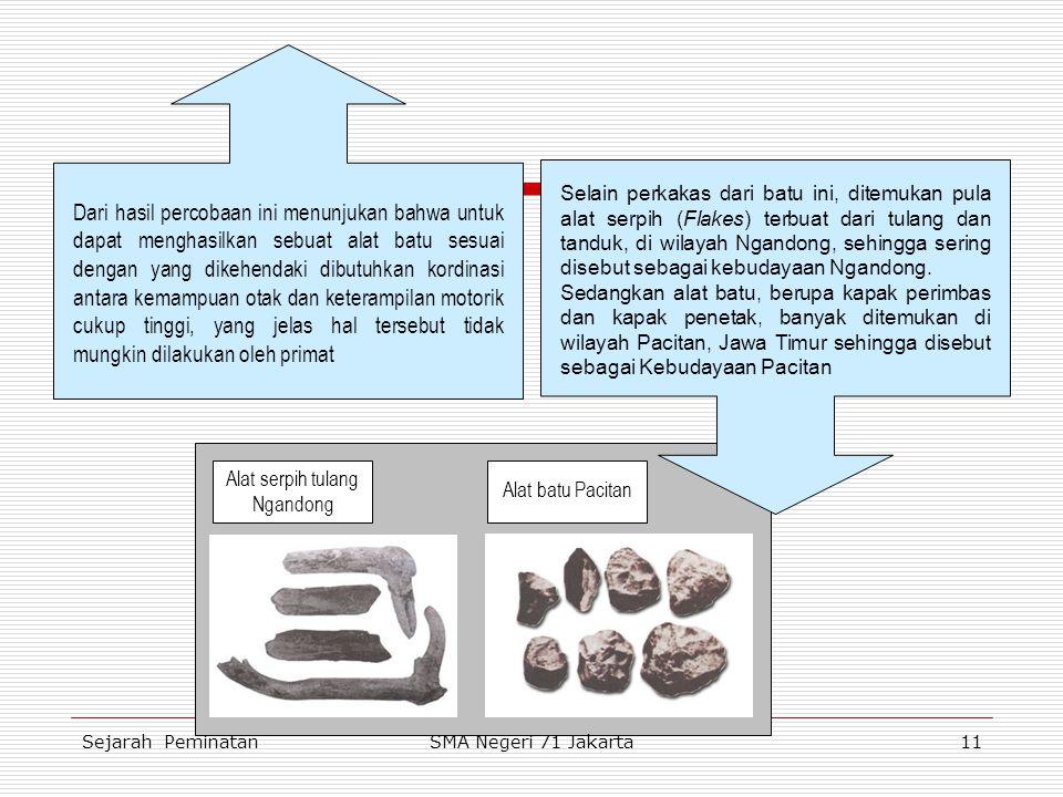 Alat serpih tulang Ngandong