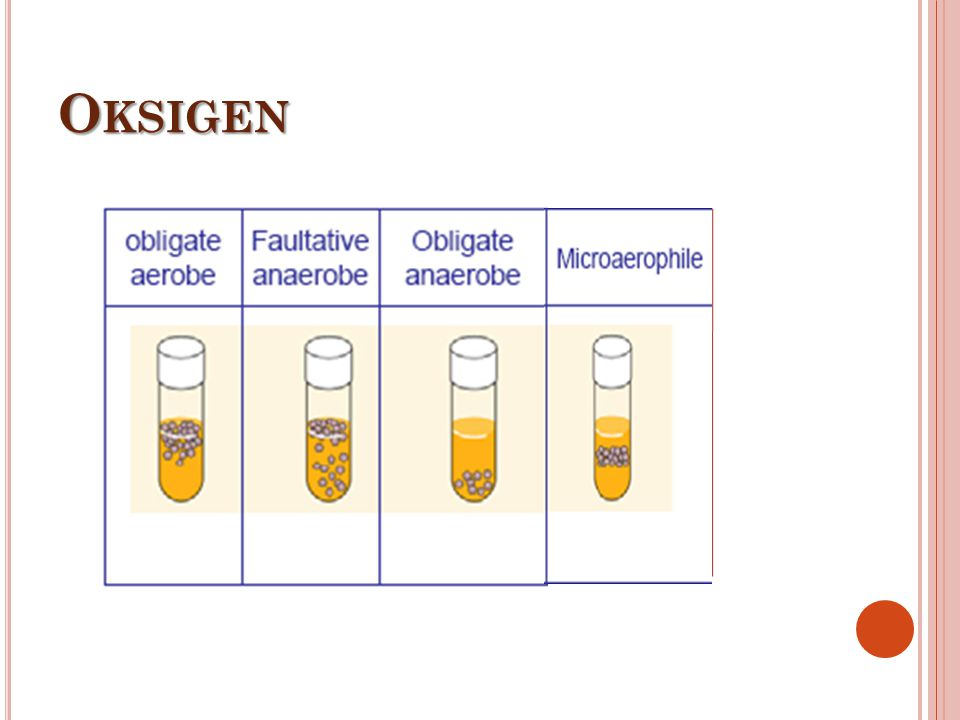 Oksigen