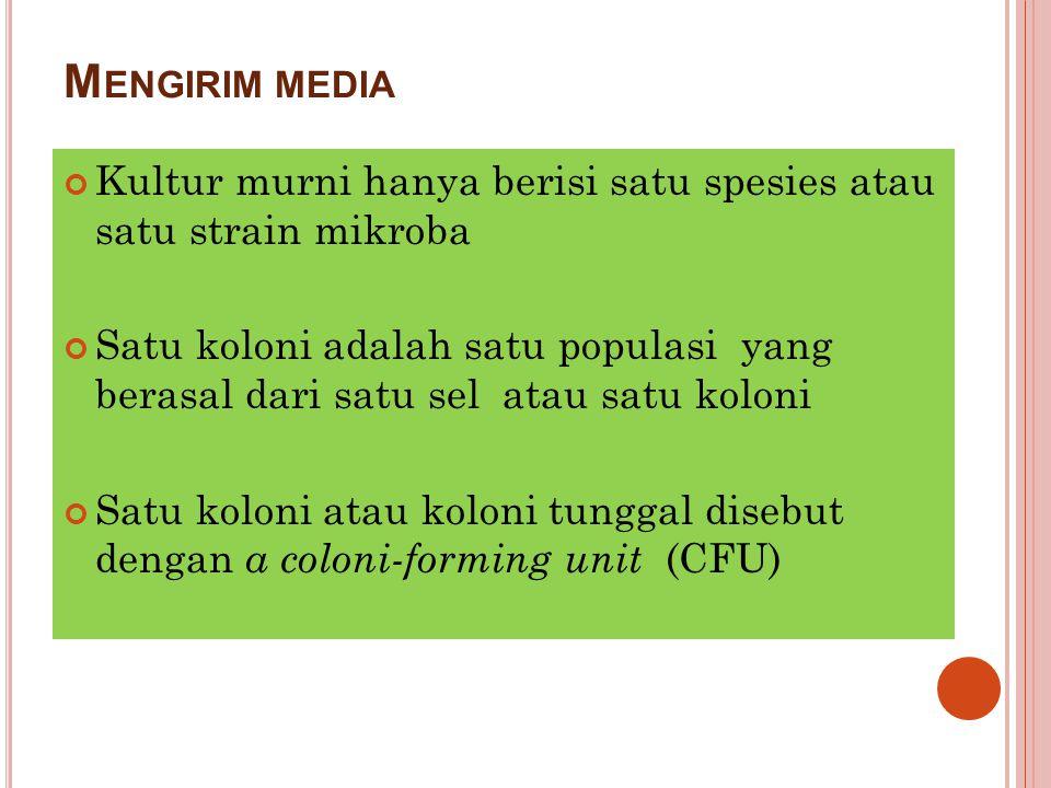 Mengirim media Kultur murni hanya berisi satu spesies atau satu strain mikroba.