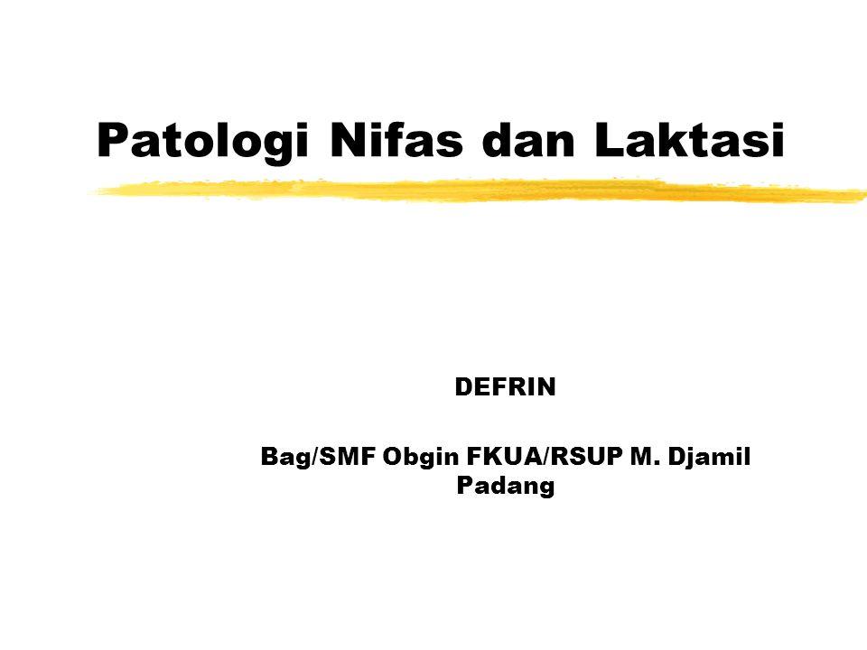 Patologi Nifas dan Laktasi