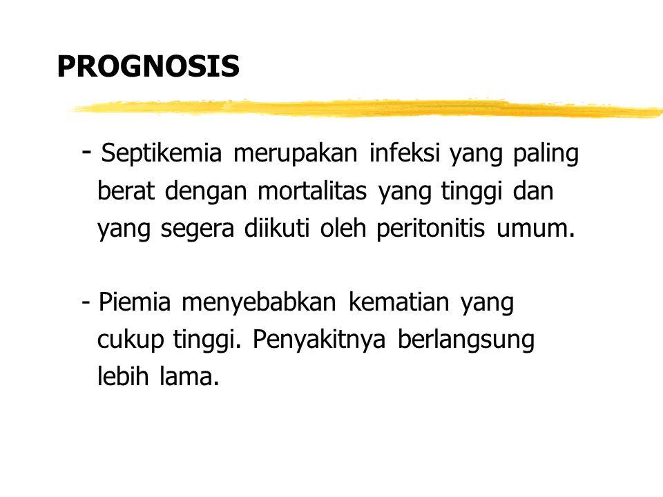 - Septikemia merupakan infeksi yang paling