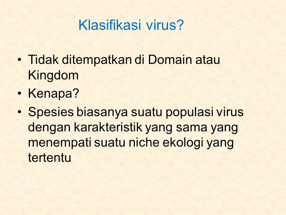 Klasifikasi virus Tidak ditempatkan di Domain atau Kingdom Kenapa