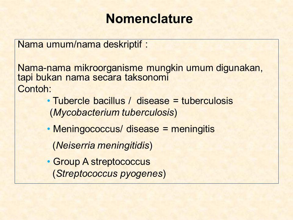 Nomenclature Nama umum/nama deskriptif :