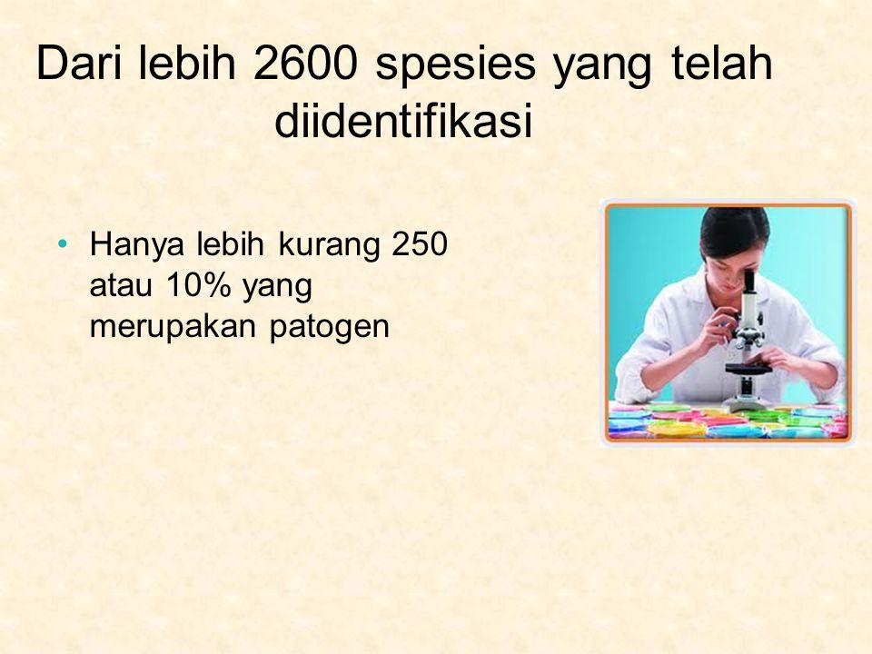 Dari lebih 2600 spesies yang telah diidentifikasi