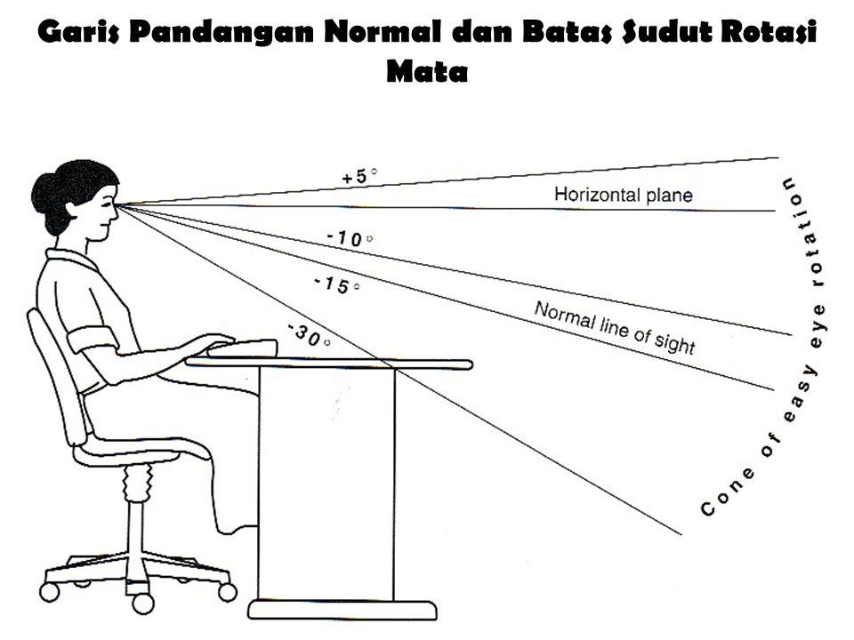 Garis Pandangan Normal dan Batas Sudut Rotasi Mata