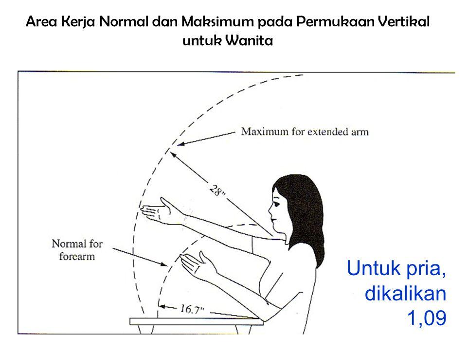 Area Kerja Normal dan Maksimum pada Permukaan Vertikal untuk Wanita