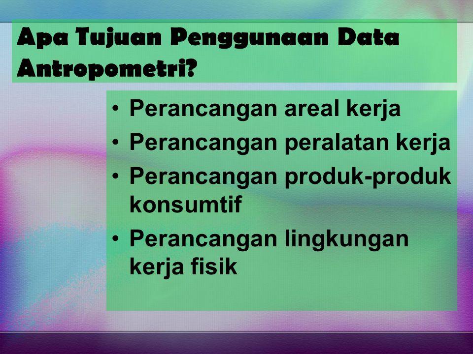 Apa Tujuan Penggunaan Data Antropometri