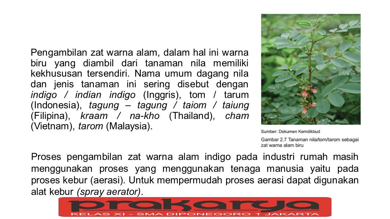 Pengambilan zat warna alam, dalam hal ini warna biru yang diambil dari tanaman nila memiliki kekhususan tersendiri. Nama umum dagang nila dan jenis tanaman ini sering disebut dengan indigo / indian indigo (Inggris), tom / tarum (Indonesia), tagung – tagung / taiom / taiung (Filipina), kraam / na-kho (Thailand), cham (Vietnam), tarom (Malaysia).