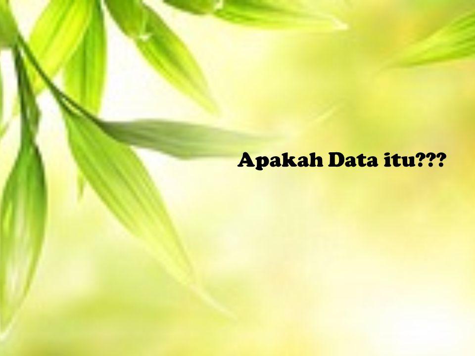 Apakah Data itu