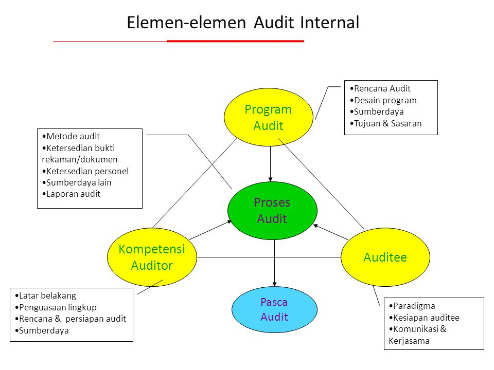 Elemen-elemen Audit Internal