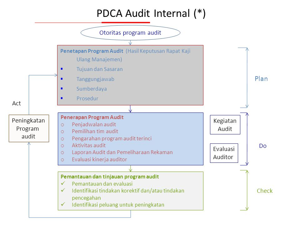 PDCA Audit Internal (*)