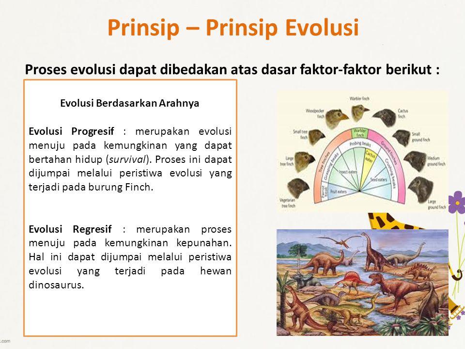 Prinsip – Prinsip Evolusi