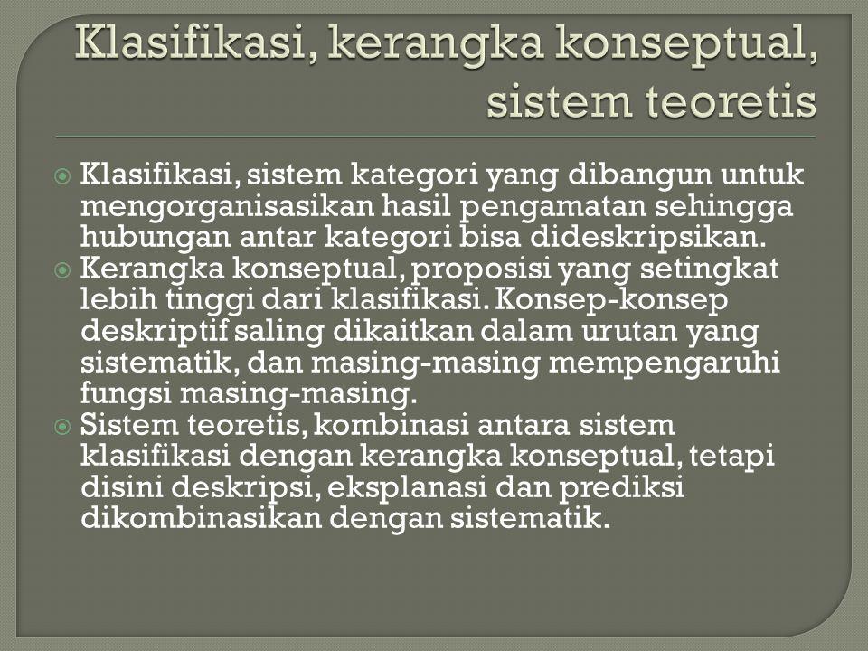 Klasifikasi, kerangka konseptual, sistem teoretis