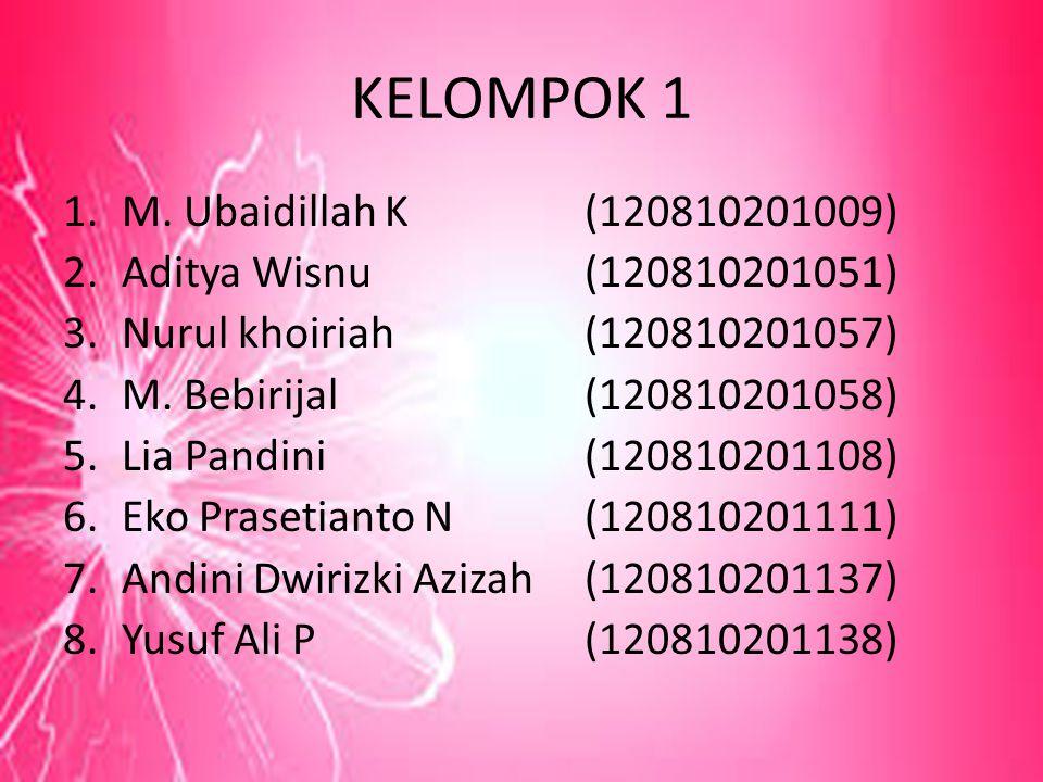 KELOMPOK 1 M. Ubaidillah K (120810201009) Aditya Wisnu (120810201051)