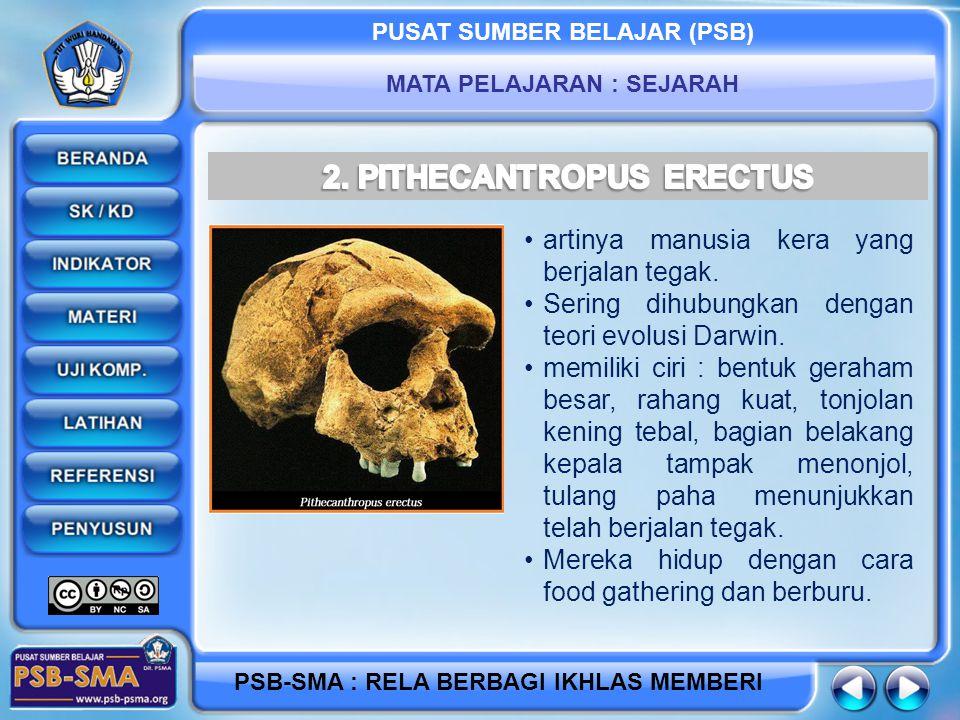 2. PITHECANTROPUS ERECTUS