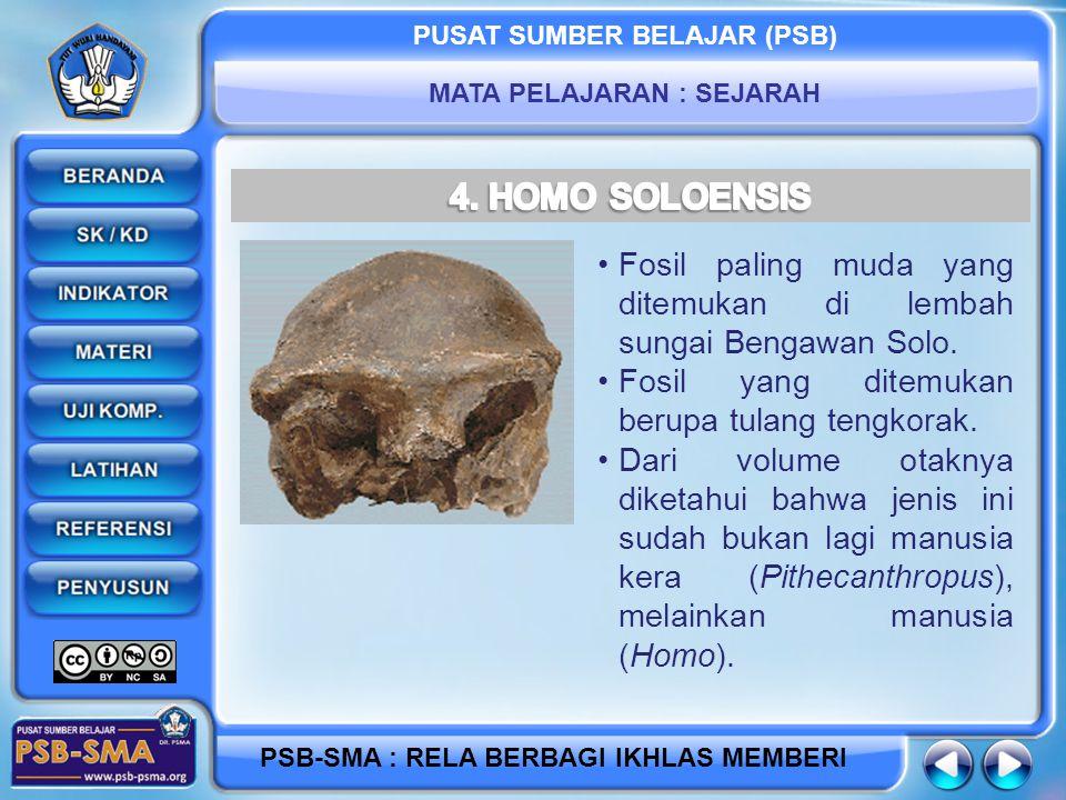 4. HOMO SOLOENSIS Fosil paling muda yang ditemukan di lembah sungai Bengawan Solo. Fosil yang ditemukan berupa tulang tengkorak.