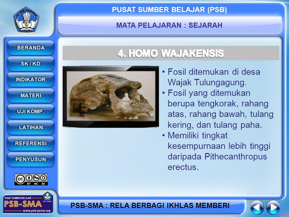 4. HOMO WAJAKENSIS Fosil ditemukan di desa Wajak Tulungagung.