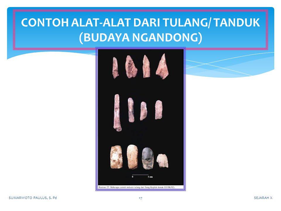 CONTOH ALAT-ALAT DARI TULANG/ TANDUK (BUDAYA NGANDONG)
