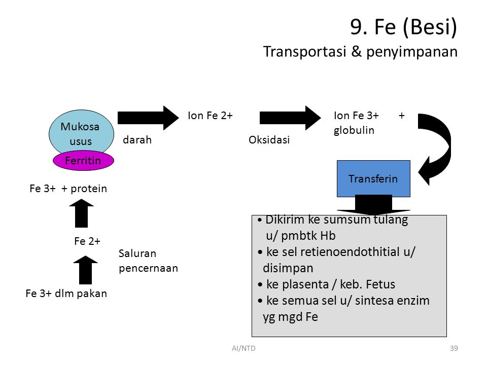 9. Fe (Besi) Transportasi & penyimpanan