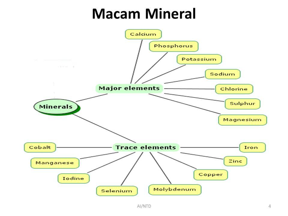 Macam Mineral AI/NTD