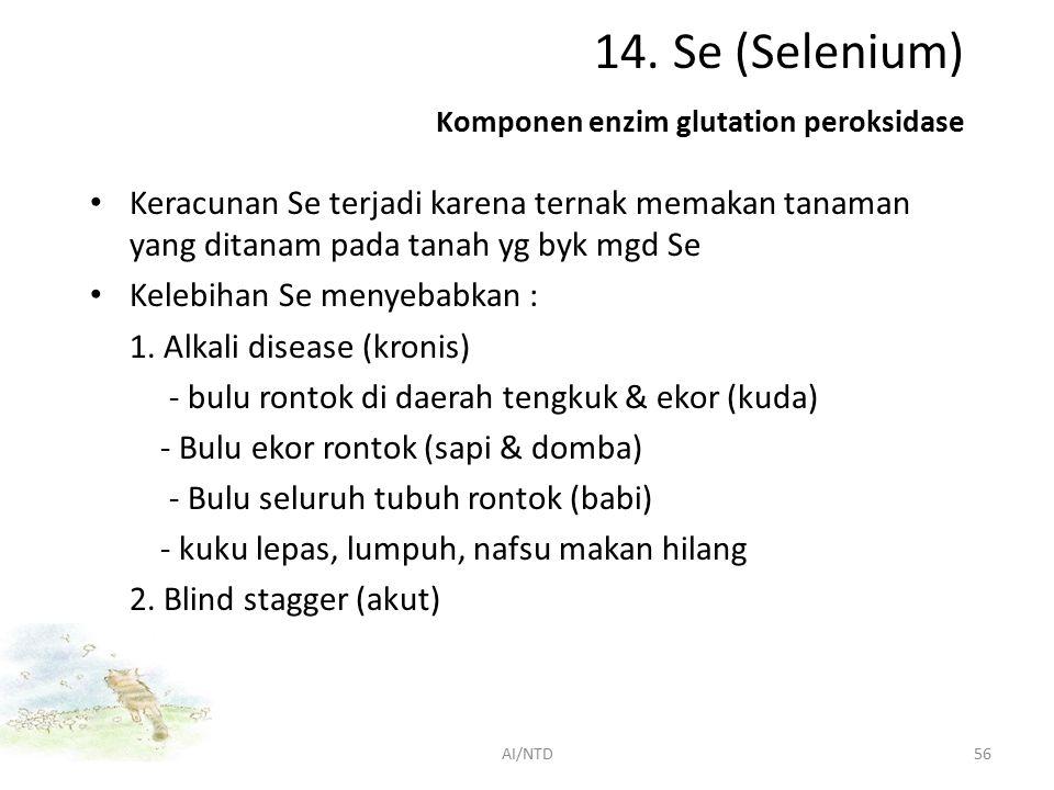 14. Se (Selenium) Komponen enzim glutation peroksidase