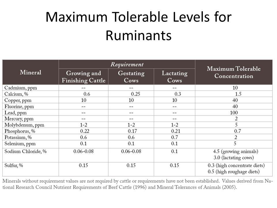 Maximum Tolerable Levels for Ruminants