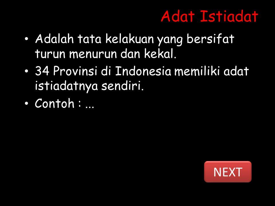 Adat Istiadat Adalah tata kelakuan yang bersifat turun menurun dan kekal. 34 Provinsi di Indonesia memiliki adat istiadatnya sendiri.