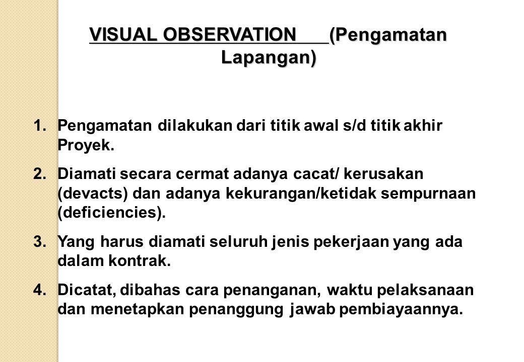 VISUAL OBSERVATION (Pengamatan Lapangan)
