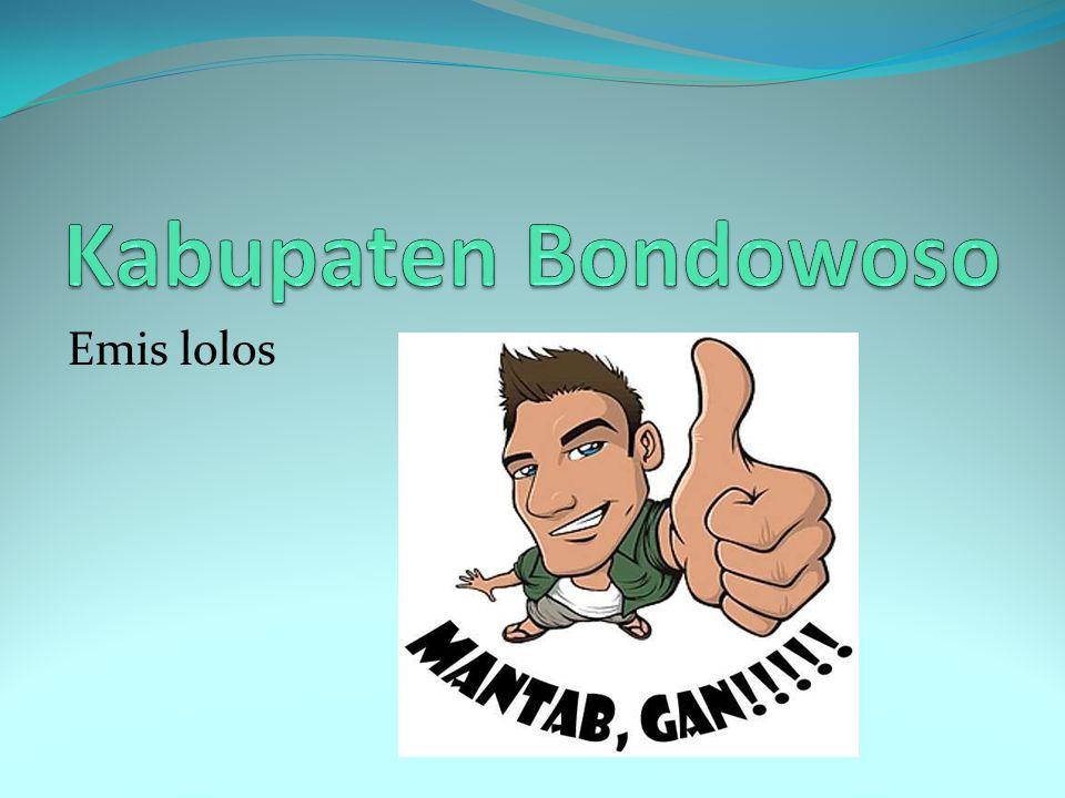 Kabupaten Bondowoso Emis lolos
