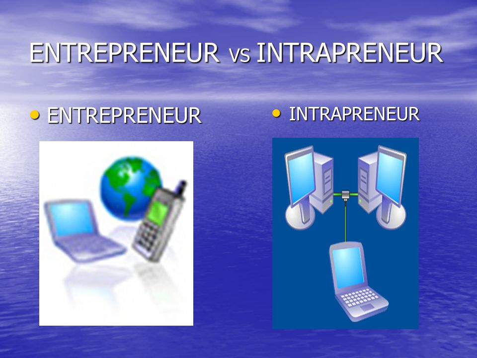 ENTREPRENEUR VS INTRAPRENEUR