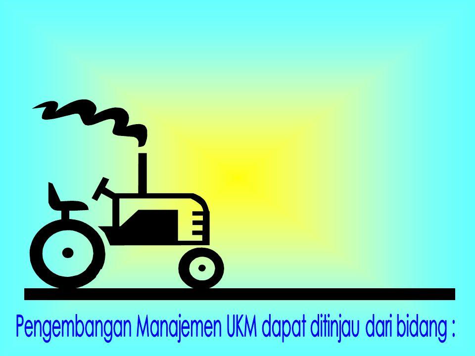 Pengembangan Manajemen UKM dapat ditinjau dari bidang :