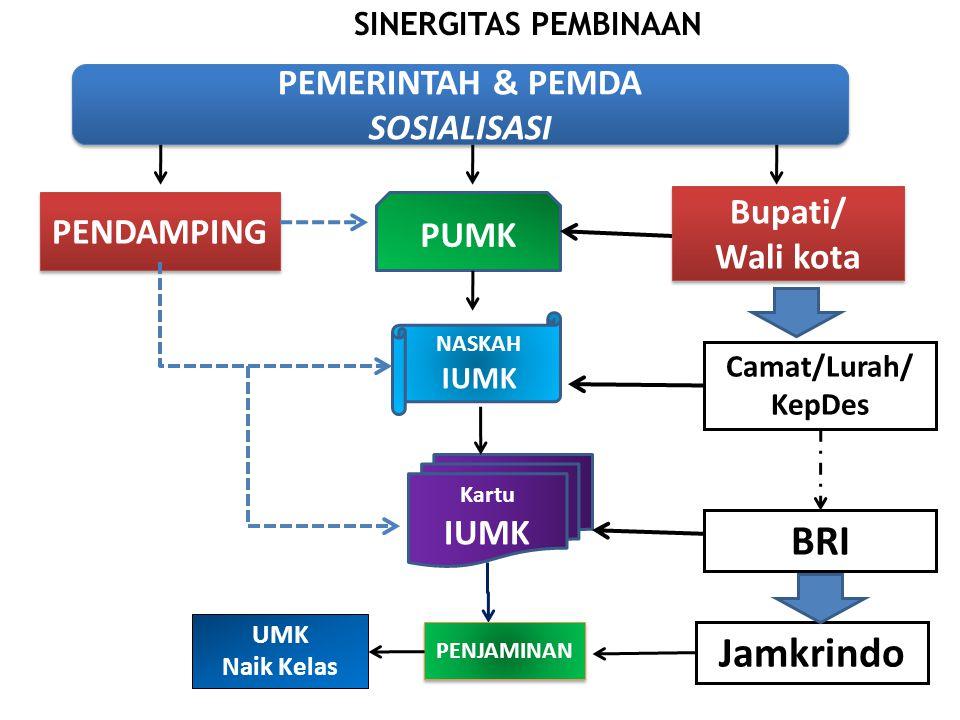 BRI Jamkrindo PEMERINTAH & PEMDA SOSIALISASI Bupati/ PENDAMPING PUMK