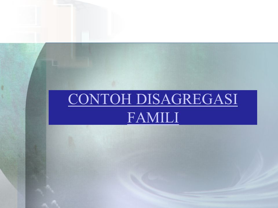 CONTOH DISAGREGASI FAMILI