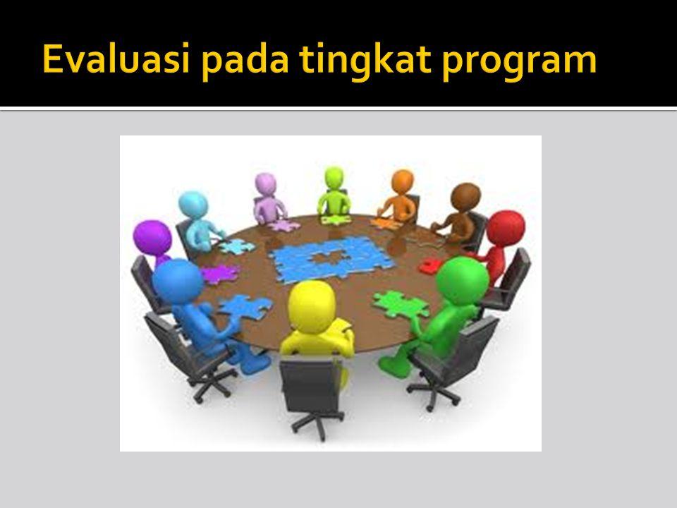 Evaluasi pada tingkat program
