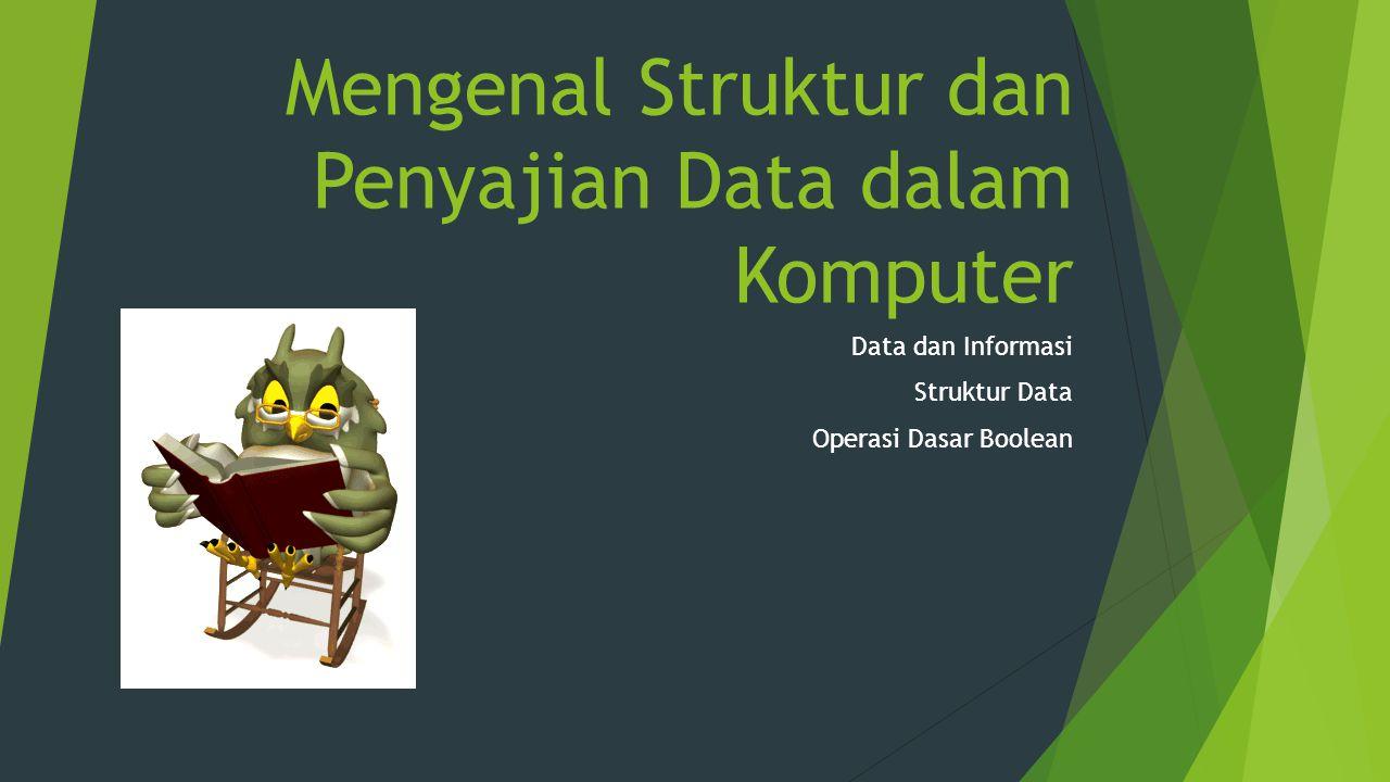 Mengenal Struktur dan Penyajian Data dalam Komputer