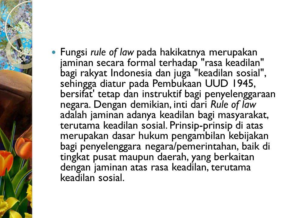 Fungsi rule of law pada hakikatnya merupakan jaminan secara formal terhadap rasa keadilan bagi rakyat Indonesia dan juga keadilan sosial , sehingga diatur pada Pembukaan UUD 1945, bersifat tetap dan instruktif bagi penyelenggaraan negara.