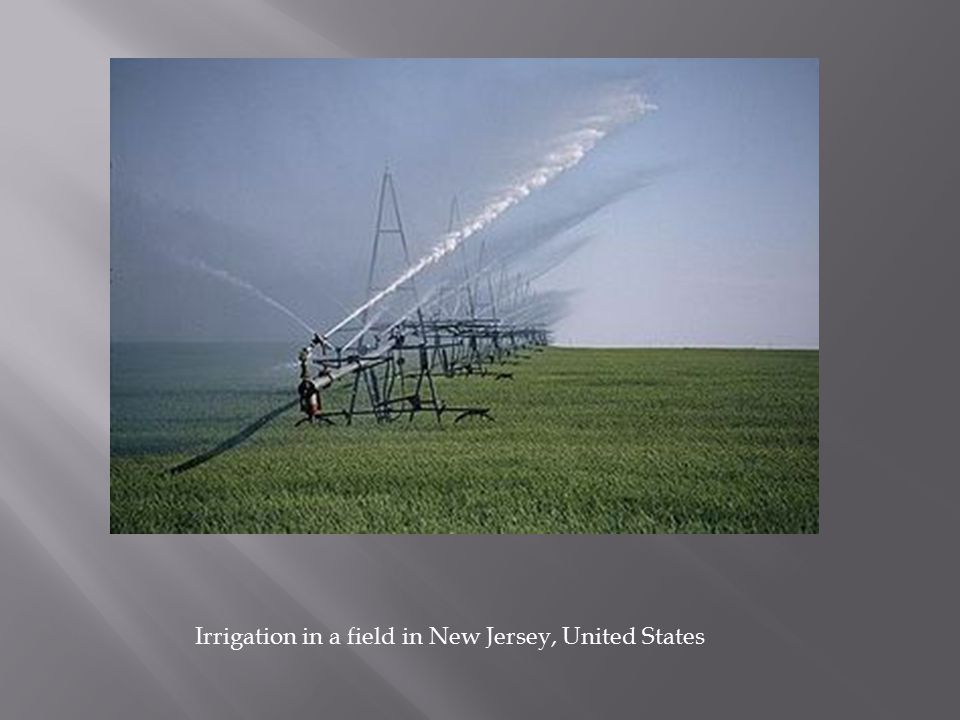 Irrigation in a field in New Jersey, United States