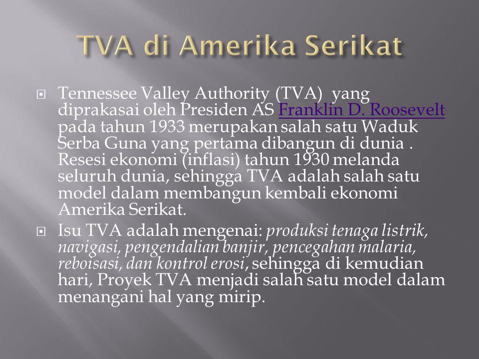 TVA di Amerika Serikat