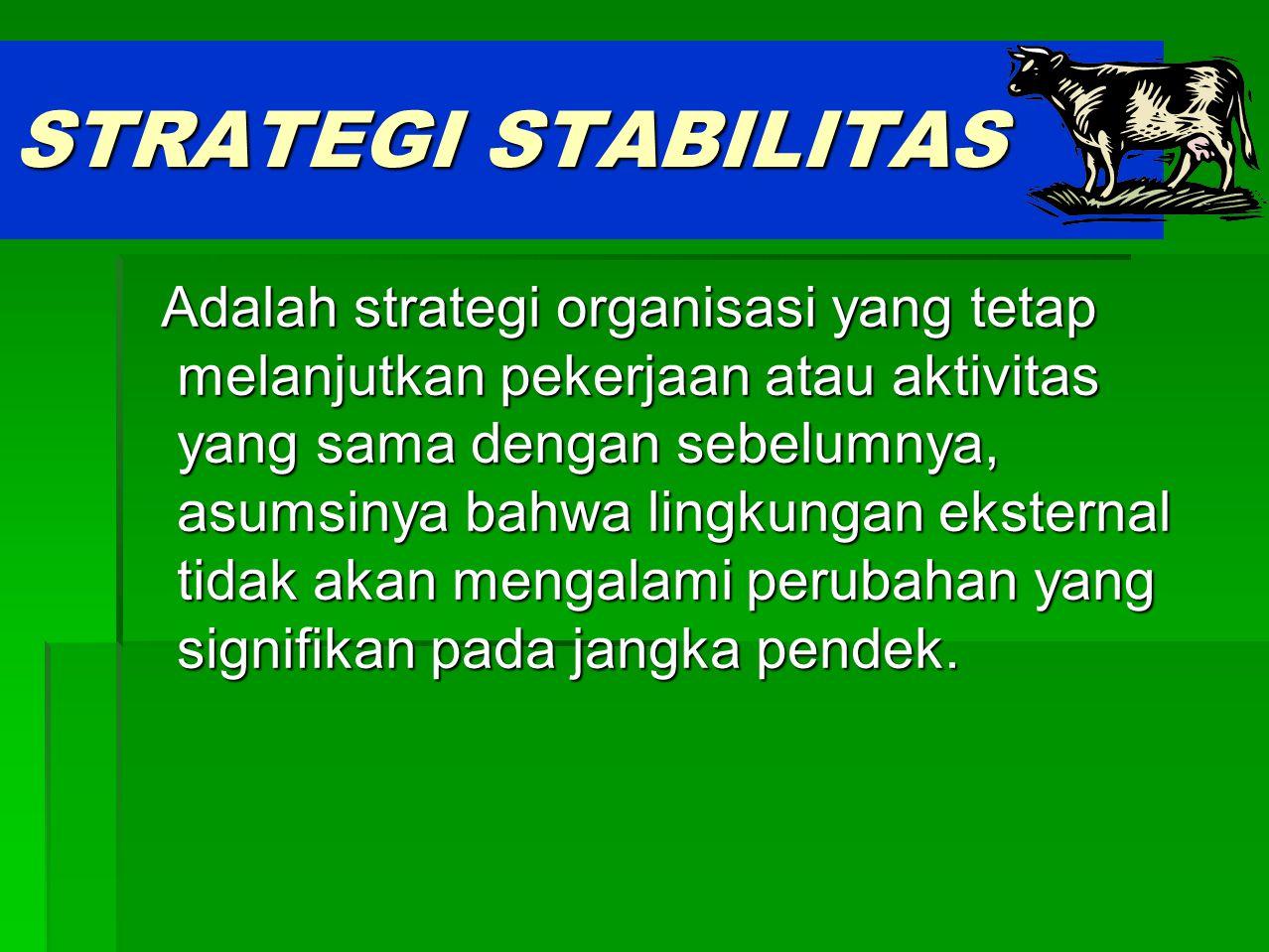 STRATEGI STABILITAS
