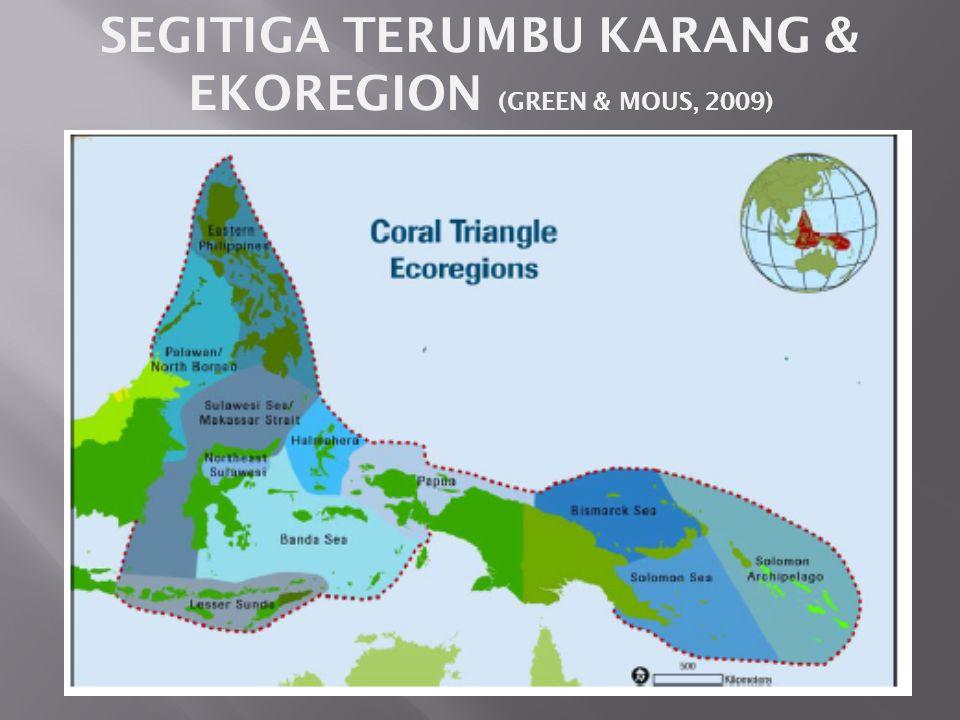 SEGITIGA TERUMBU KARANG & EKOREGION (GREEN & MOUS, 2009)
